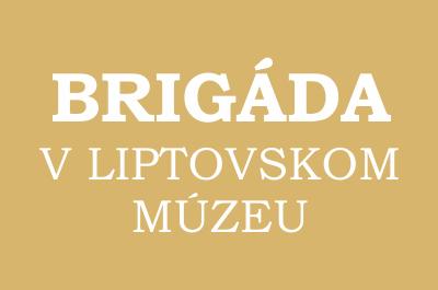 Brigáda v Liptovskom múzeum - leto 2013