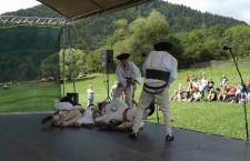 126 festival pod sidorovom 2017